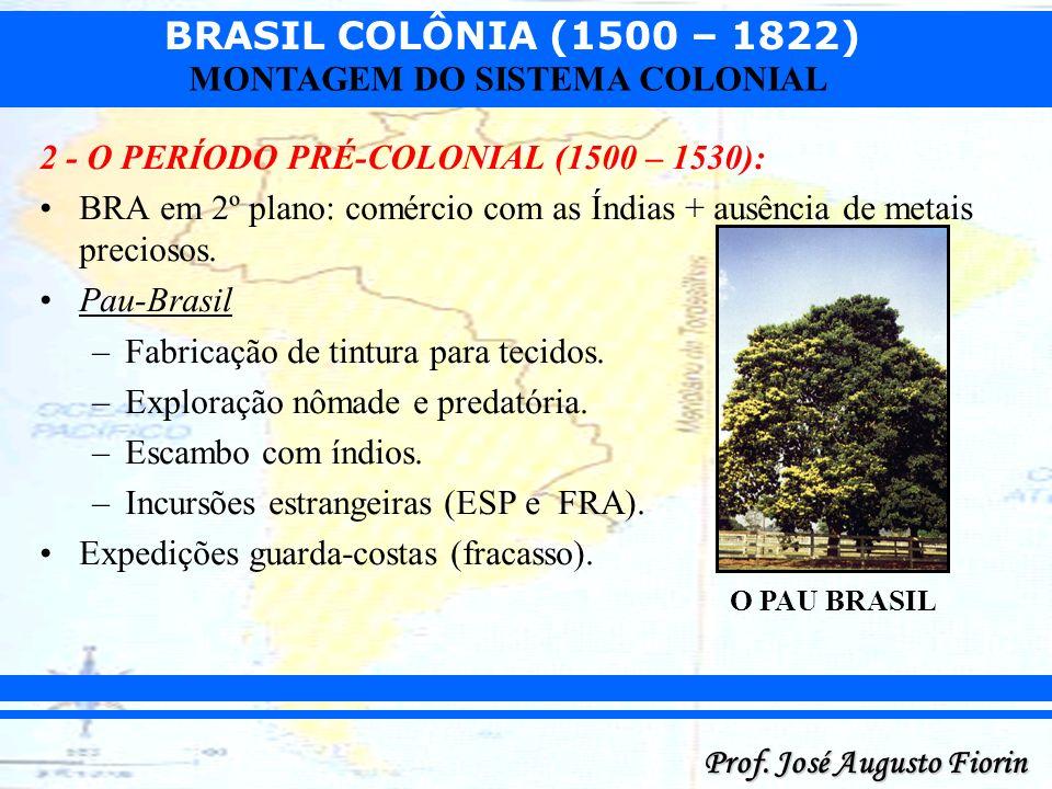 BRASIL COLÔNIA (1500 – 1822) Prof. José Augusto Fiorin MONTAGEM DO SISTEMA COLONIAL 2 - O PERÍODO PRÉ-COLONIAL (1500 – 1530): BRA em 2º plano: comérci