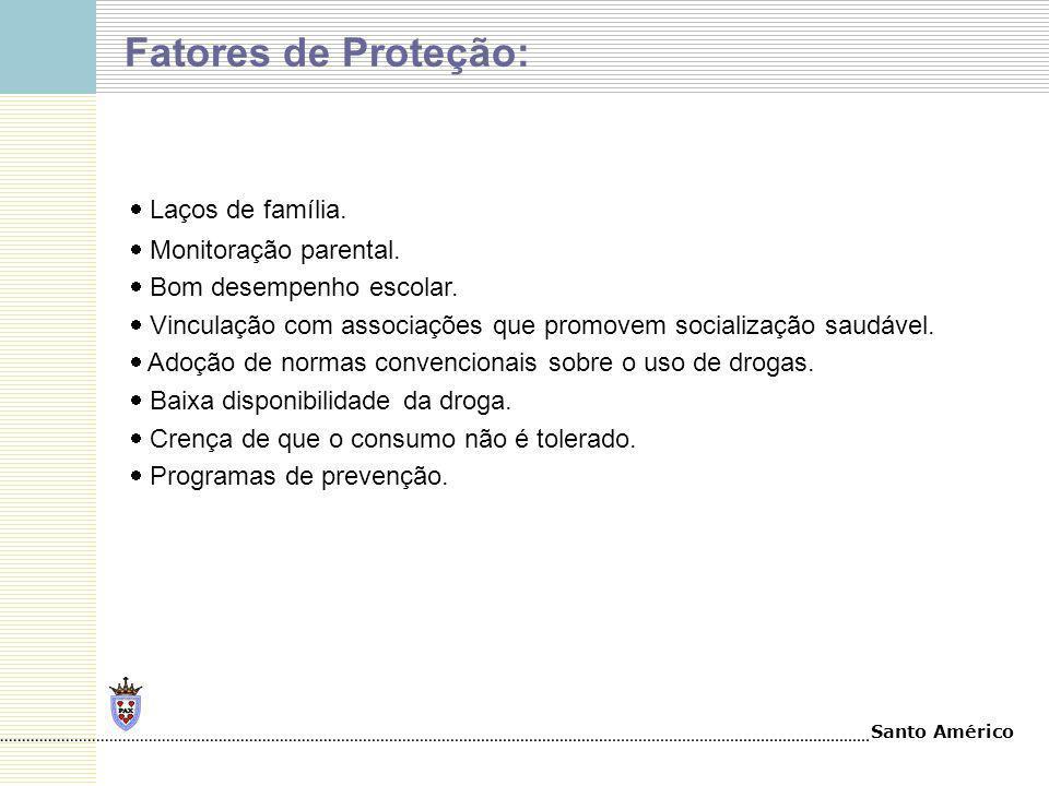 Santo Américo Fatores de Proteção: Laços de família. Monitoração parental. Bom desempenho escolar. Vinculação com associações que promovem socializaçã