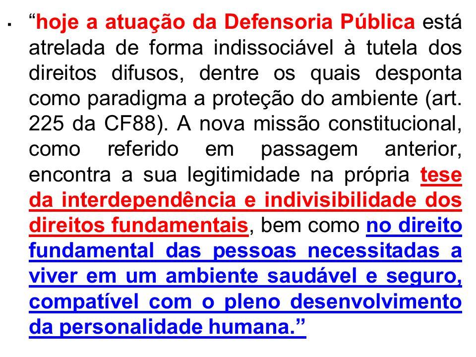 . hoje a atuação da Defensoria Pública está atrelada de forma indissociável à tutela dos direitos difusos, dentre os quais desponta como paradigma a p
