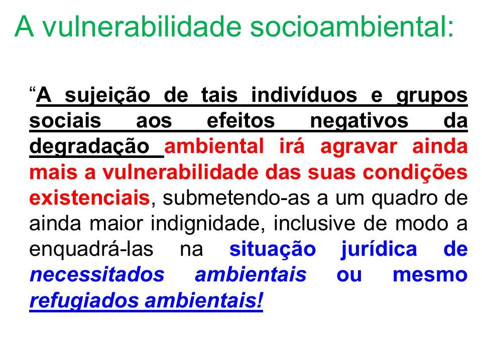 A vulnerabilidade socioambiental: A sujeição de tais indivíduos e grupos sociais aos efeitos negativos da degradação ambiental irá agravar ainda mais