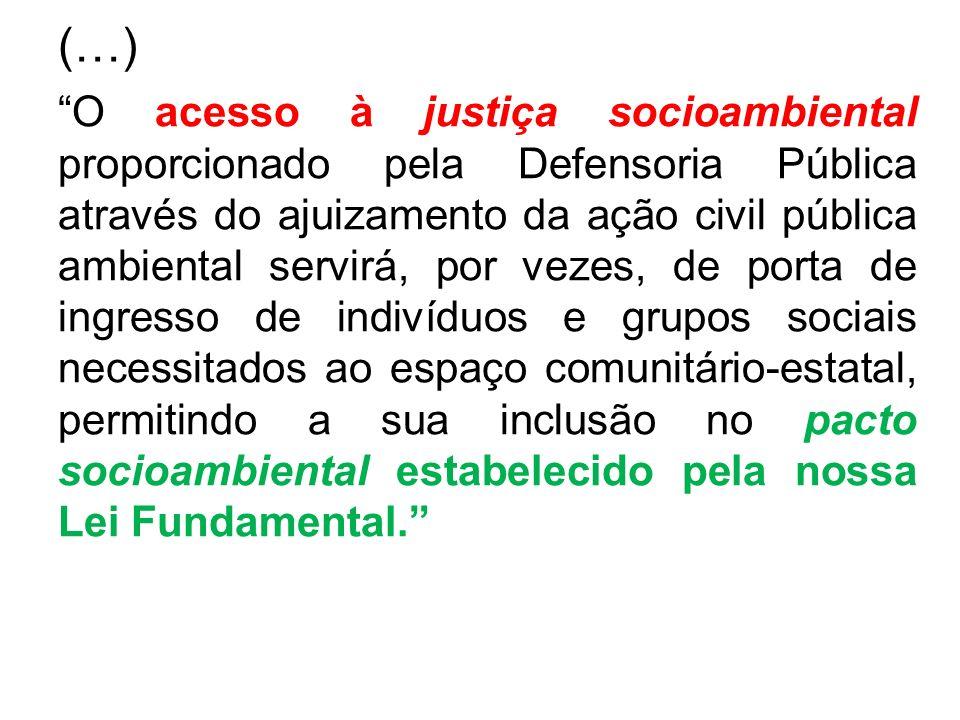 (…) O acesso à justiça socioambiental proporcionado pela Defensoria Pública através do ajuizamento da ação civil pública ambiental servirá, por vezes,