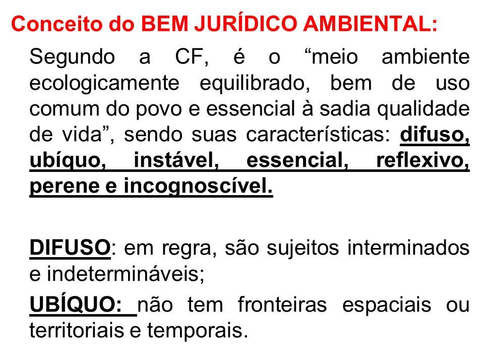 Conceito do BEM JURÍDICO AMBIENTAL: Segundo a CF, é o meio ambiente ecologicamente equilibrado, bem de uso comum do povo e essencial à sadia qualidade