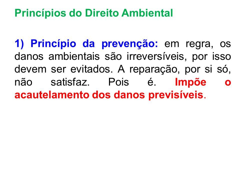Princípios do Direito Ambiental 1) Princípio da prevenção: em regra, os danos ambientais são irreversíveis, por isso devem ser evitados. A reparação,