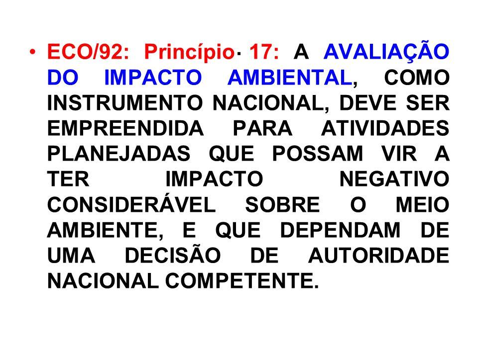 . ECO/92: Princípio 17: A AVALIAÇÃO DO IMPACTO AMBIENTAL, COMO INSTRUMENTO NACIONAL, DEVE SER EMPREENDIDA PARA ATIVIDADES PLANEJADAS QUE POSSAM VIR A