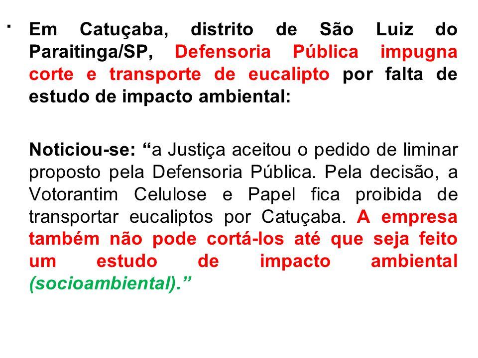 . Em Catuçaba, distrito de São Luiz do Paraitinga/SP, Defensoria Pública impugna corte e transporte de eucalipto por falta de estudo de impacto ambien