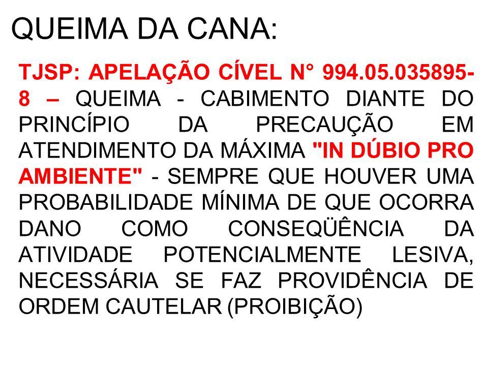 QUEIMA DA CANA: TJSP: APELAÇÃO CÍVEL N° 994.05.035895- 8 – QUEIMA - CABIMENTO DIANTE DO PRINCÍPIO DA PRECAUÇÃO EM ATENDIMENTO DA MÁXIMA