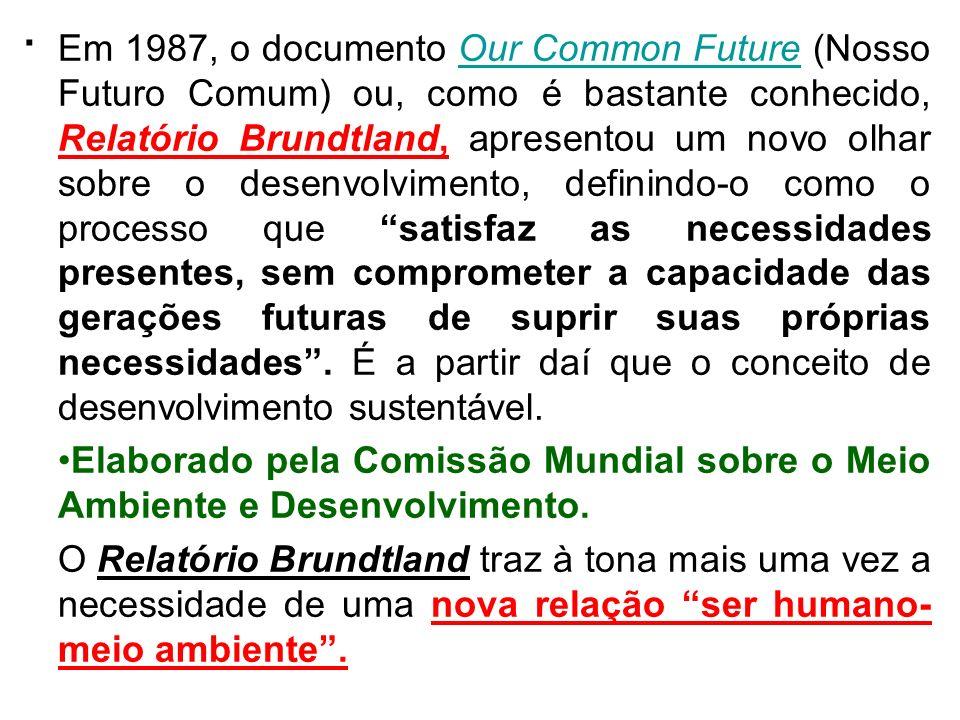 . Em 1987, o documento Our Common Future (Nosso Futuro Comum) ou, como é bastante conhecido, Relatório Brundtland, apresentou um novo olhar sobre o de