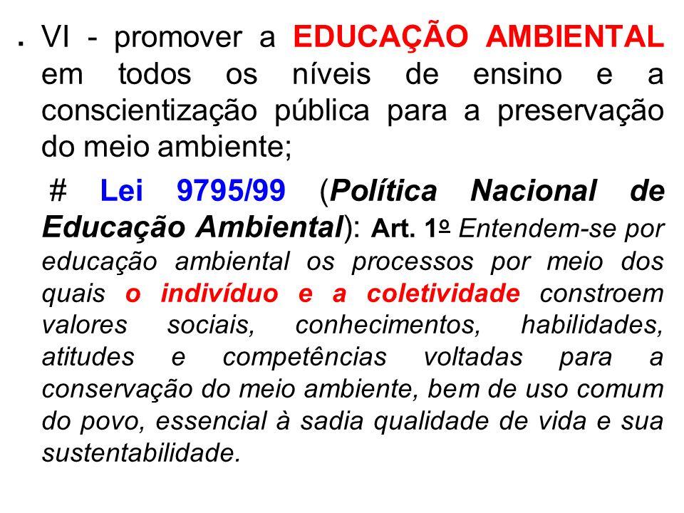 . VI - promover a EDUCAÇÃO AMBIENTAL em todos os níveis de ensino e a conscientização pública para a preservação do meio ambiente; # Lei 9795/99 (Polí