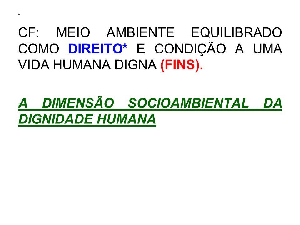 .. CF: MEIO AMBIENTE EQUILIBRADO COMO DIREITO* E CONDIÇÃO A UMA VIDA HUMANA DIGNA (FINS). A DIMENSÃO SOCIOAMBIENTAL DA DIGNIDADE HUMANA