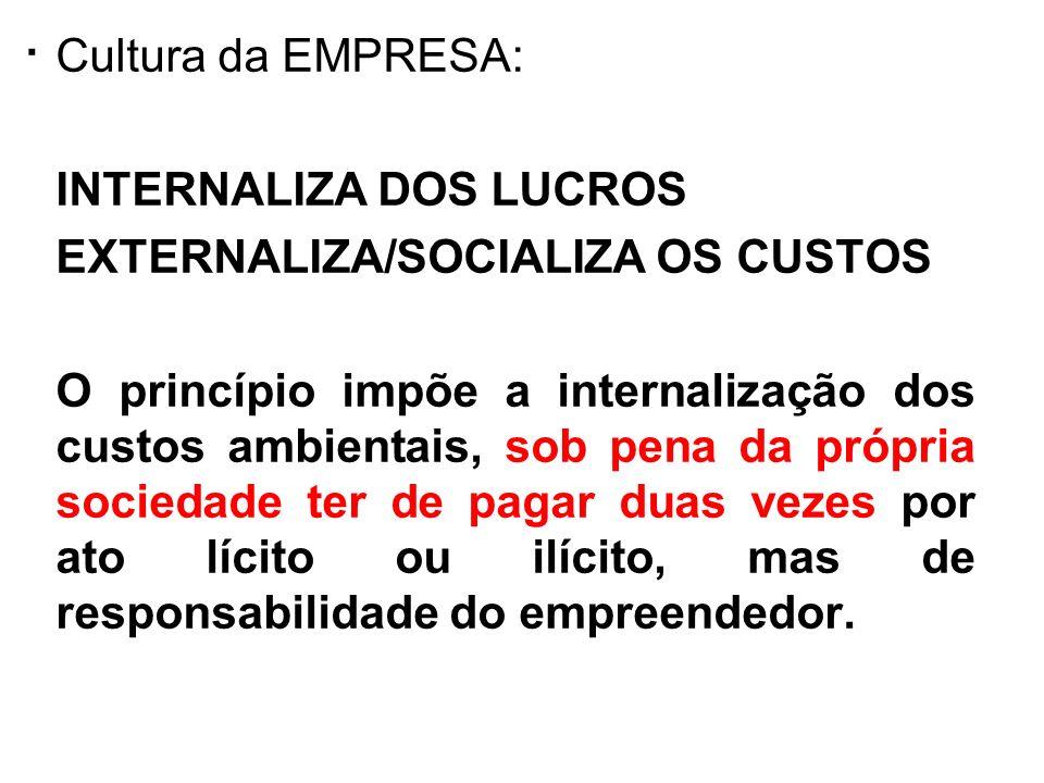 . Cultura da EMPRESA: INTERNALIZA DOS LUCROS EXTERNALIZA/SOCIALIZA OS CUSTOS O princípio impõe a internalização dos custos ambientais, sob pena da pró