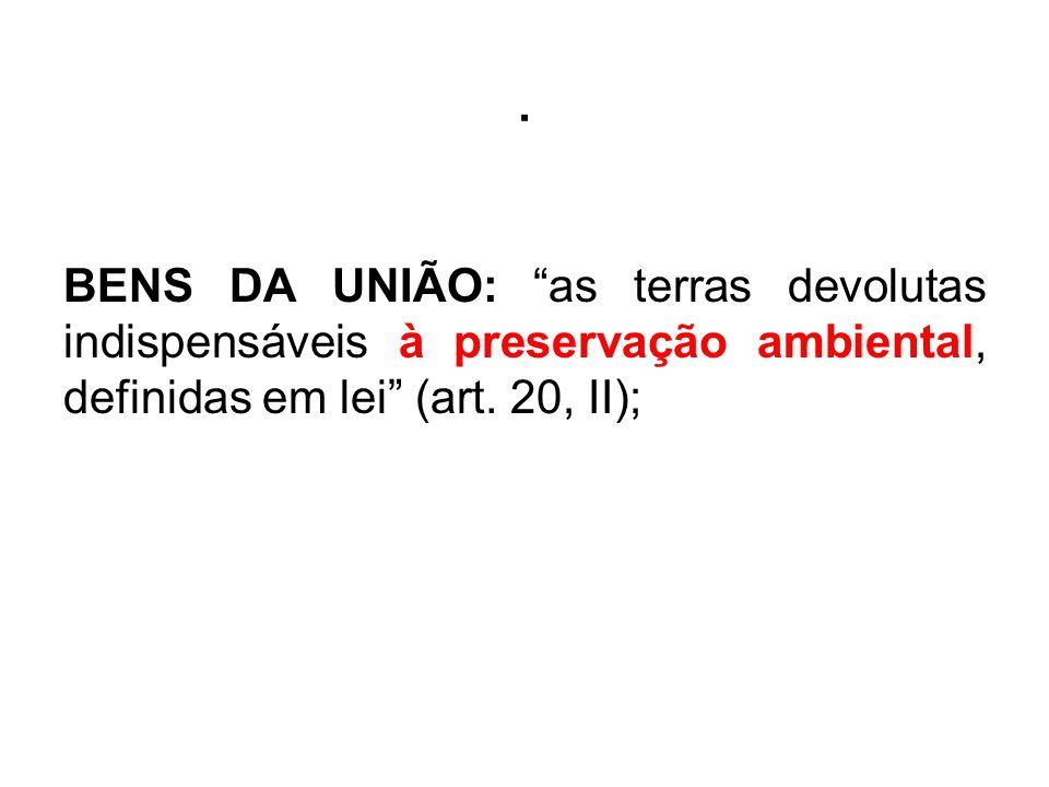 . BENS DA UNIÃO: as terras devolutas indispensáveis à preservação ambiental, definidas em lei (art. 20, II);