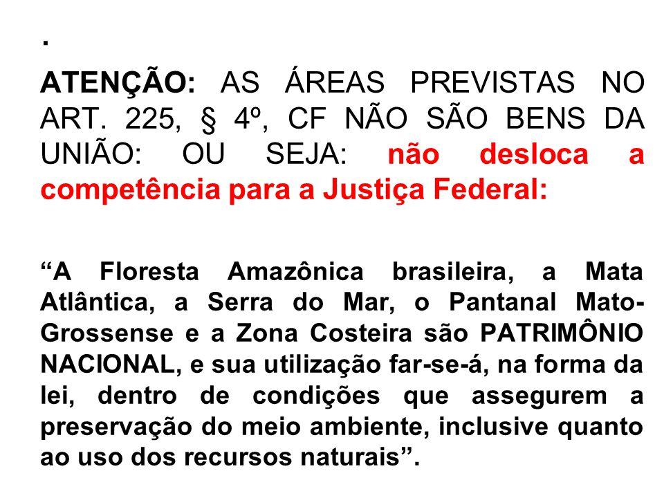 . ATENÇÃO: AS ÁREAS PREVISTAS NO ART. 225, § 4º, CF NÃO SÃO BENS DA UNIÃO: OU SEJA: não desloca a competência para a Justiça Federal: A Floresta Amazô