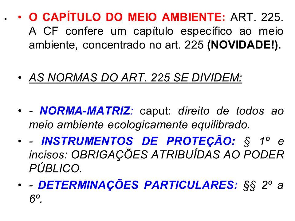 . O CAPÍTULO DO MEIO AMBIENTE: ART. 225. A CF confere um capítulo específico ao meio ambiente, concentrado no art. 225 (NOVIDADE!). AS NORMAS DO ART.