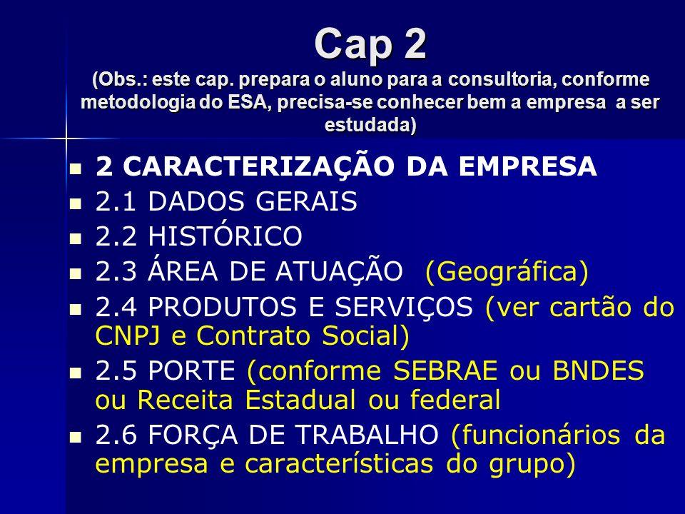 Cap 2 (Obs.: este cap. prepara o aluno para a consultoria, conforme metodologia do ESA, precisa-se conhecer bem a empresa a ser estudada) 2 CARACTERIZ