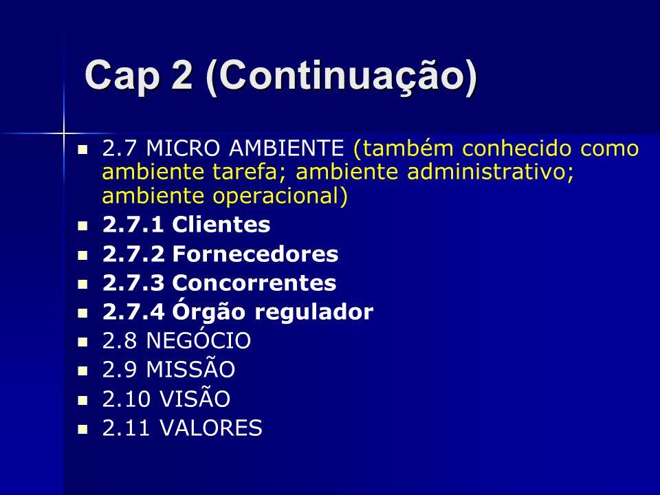 Cap 2 (Continuação) 2.7 MICRO AMBIENTE (também conhecido como ambiente tarefa; ambiente administrativo; ambiente operacional) 2.7.1 Clientes 2.7.2 For