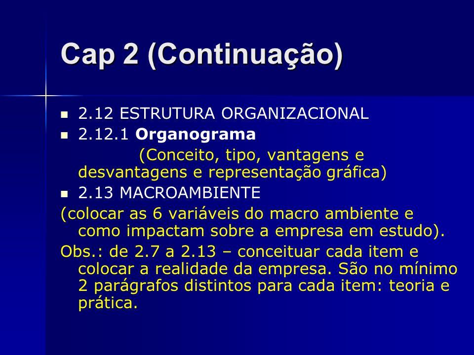 Cap 2 (Continuação) 2.12 ESTRUTURA ORGANIZACIONAL 2.12.1 Organograma (Conceito, tipo, vantagens e desvantagens e representação gráfica) 2.13 MACROAMBI