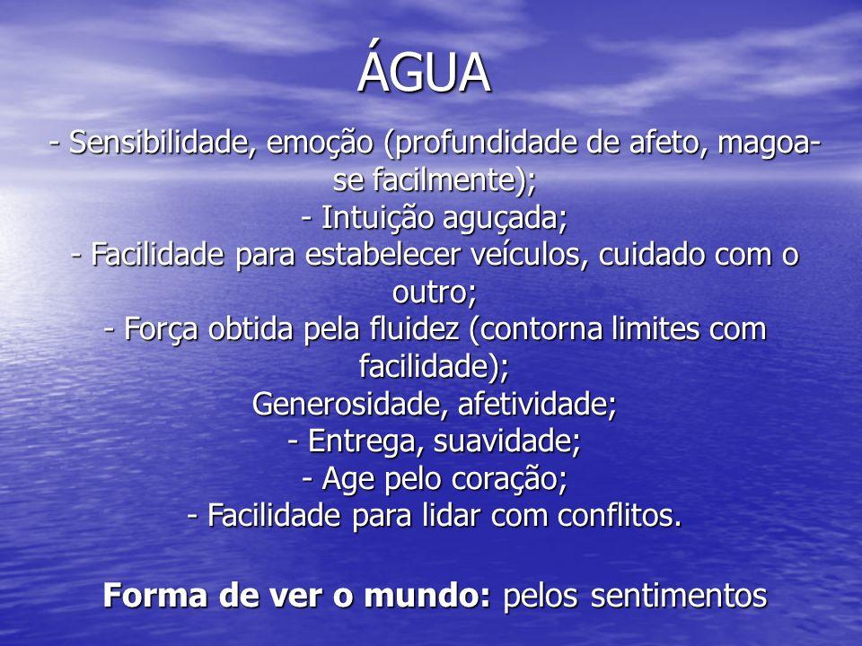 ÁGUA - Sensibilidade, emoção (profundidade de afeto, magoa- se facilmente); - Intuição aguçada; - Facilidade para estabelecer veículos, cuidado com o
