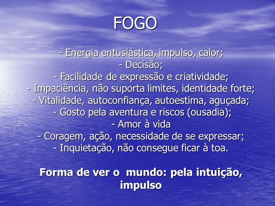 FOGO - Energia entusiástica, impulso, calor; - Decisão; - Facilidade de expressão e criatividade; - Impaciência, não suporta limites, identidade forte