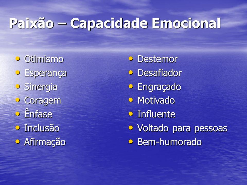Paixão – Capacidade Emocional Otimismo Otimismo Esperança Esperança Sinergia Sinergia Coragem Coragem Ênfase Ênfase Inclusão Inclusão Afirmação Afirma