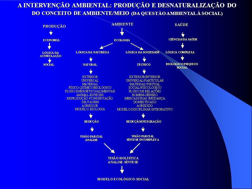 A INTERVENÇÃO AMBIENTAL: PRODUÇÃO E DESNATURALIZAÇÃO DO DO CONCEITO DE AMBIENTE/MEIO (DA QUESTÃO AMBIENTAL À SOCIAL)