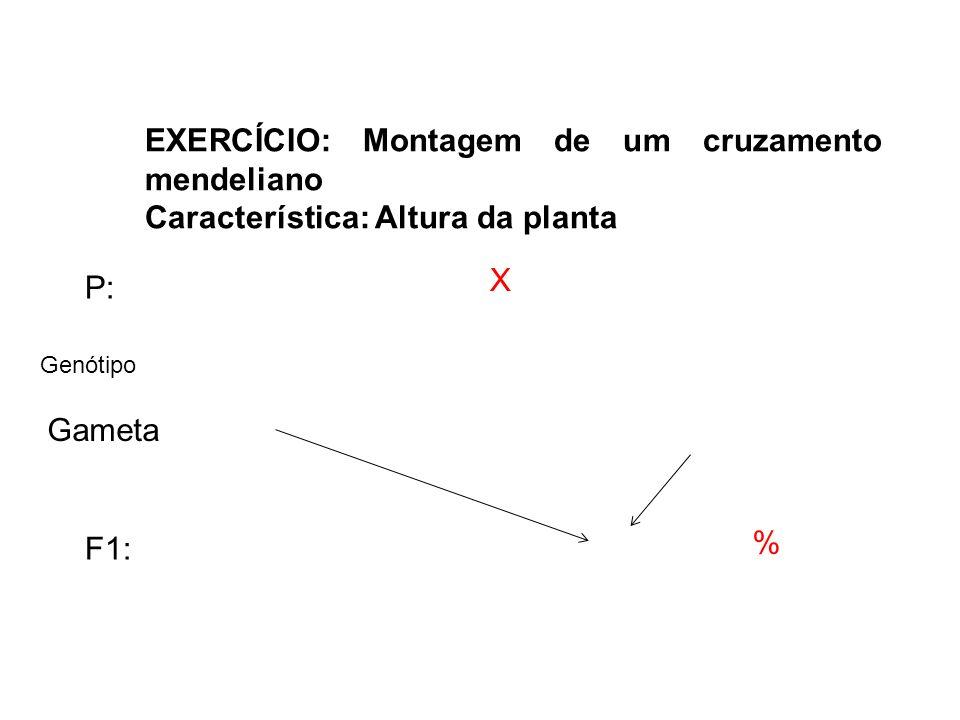 EXERCÍCIO: Montagem de um cruzamento mendeliano Característica: Altura da planta X P: % F1: Gameta Genótipo