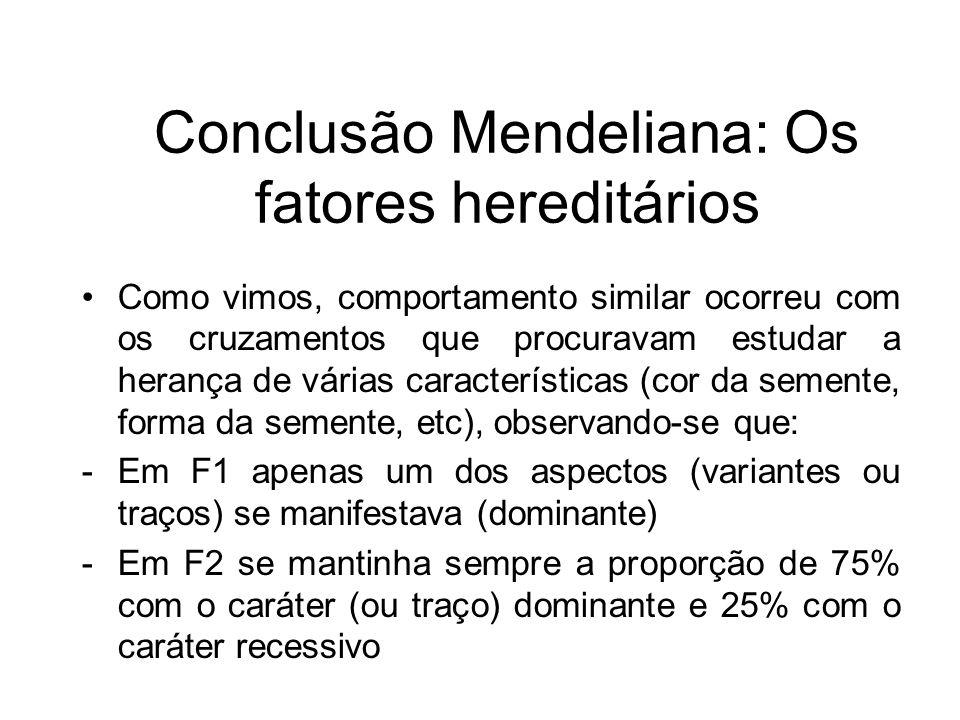 Conclusão Mendeliana: Os fatores hereditários Como vimos, comportamento similar ocorreu com os cruzamentos que procuravam estudar a herança de várias