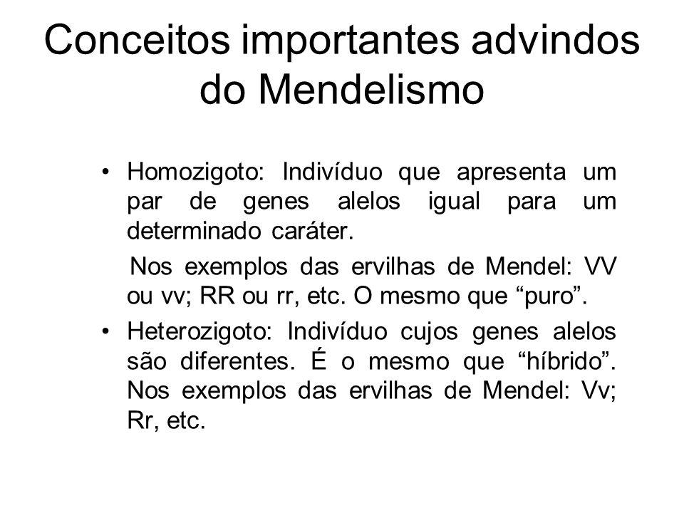 Conceitos importantes advindos do Mendelismo Homozigoto: Indivíduo que apresenta um par de genes alelos igual para um determinado caráter. Nos exemplo