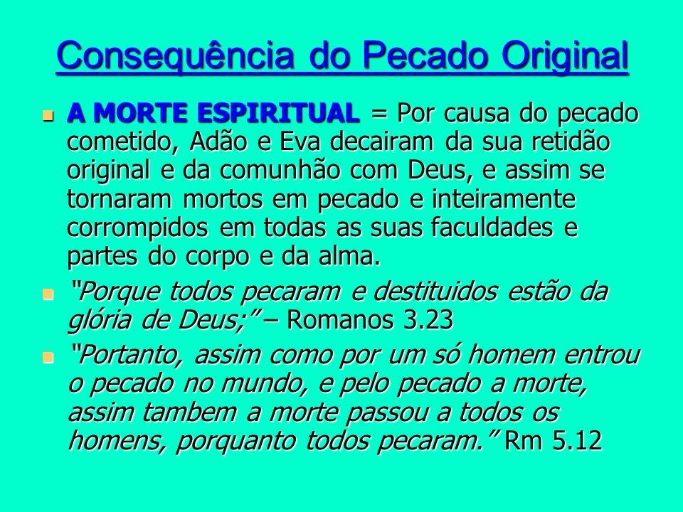 Consequência do Pecado Original A MORTE ESPIRITUAL = Por causa do pecado cometido, Adão e Eva decairam da sua retidão original e da comunhão com Deus,