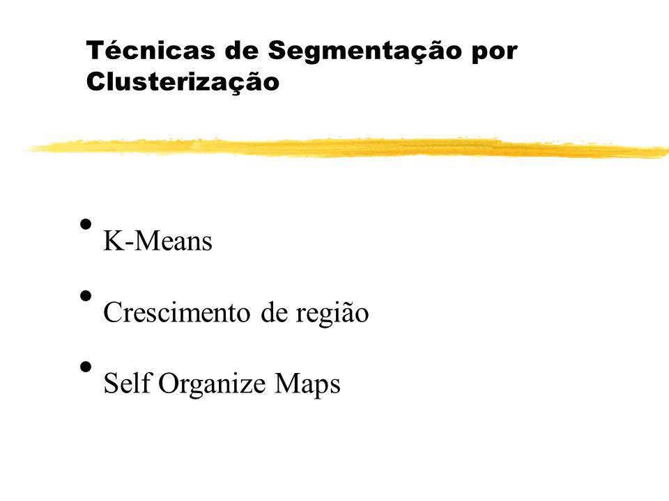 Técnicas de Segmentação por Clusterização K-Means Crescimento de região Self Organize Maps