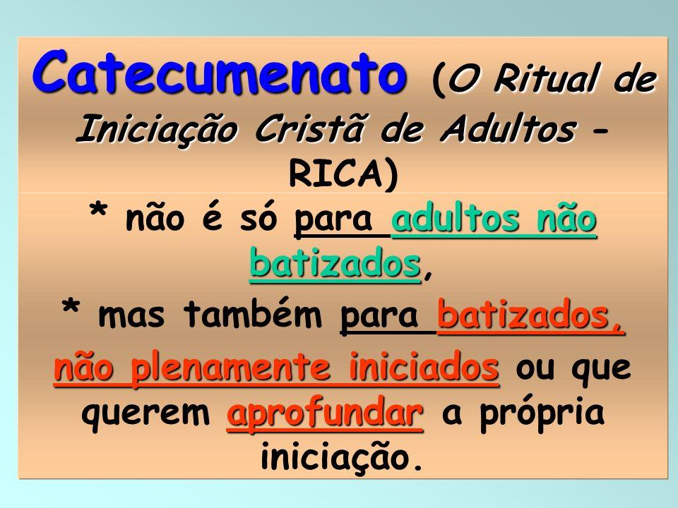 13 Catecumenato O Ritual de Iniciação Cristã de Adultos Catecumenato (O Ritual de Iniciação Cristã de Adultos - RICA) adultos não batizados * não é só