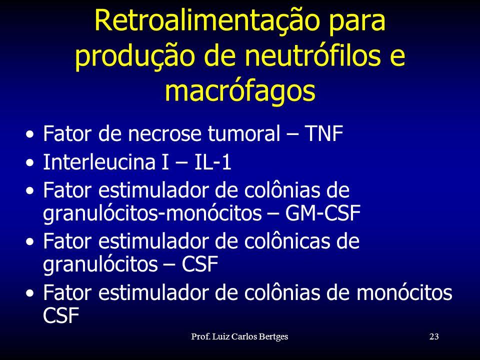 Prof. Luiz Carlos Bertges23 Retroalimentação para produção de neutrófilos e macrófagos Fator de necrose tumoral – TNF Interleucina I – IL-1 Fator esti