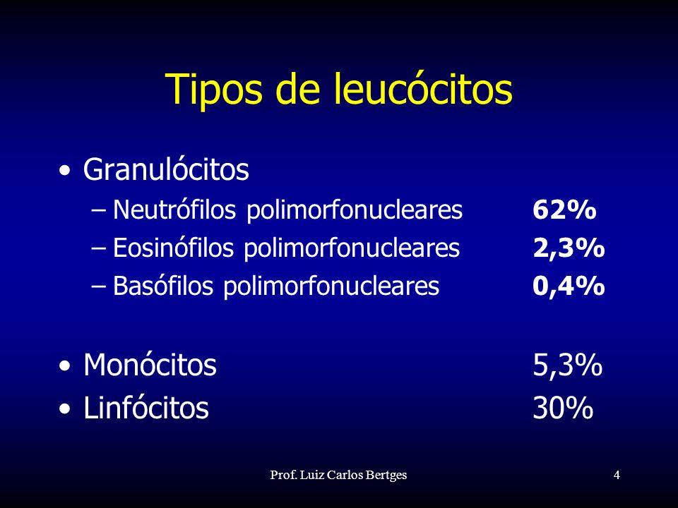 Prof. Luiz Carlos Bertges5 Granulócitos