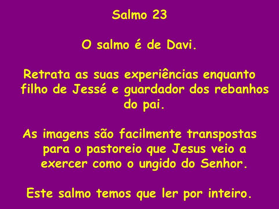 Salmo 23 O salmo é de Davi. Retrata as suas experiências enquanto filho de Jessé e guardador dos rebanhos do pai. As imagens são facilmente transposta