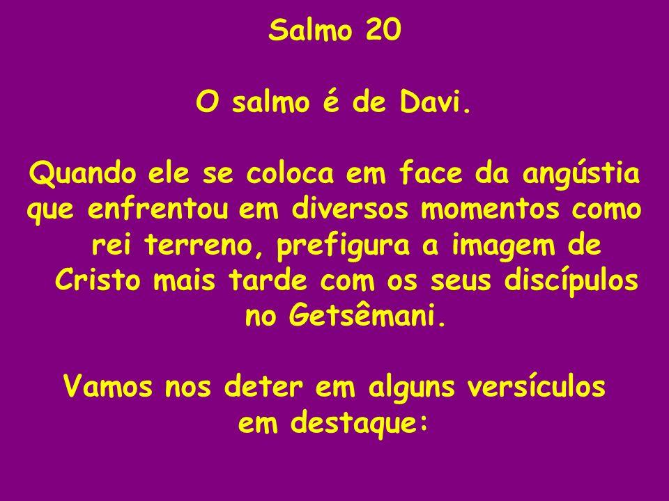 Salmo 20 O salmo é de Davi. Quando ele se coloca em face da angústia que enfrentou em diversos momentos como rei terreno, prefigura a imagem de Cristo