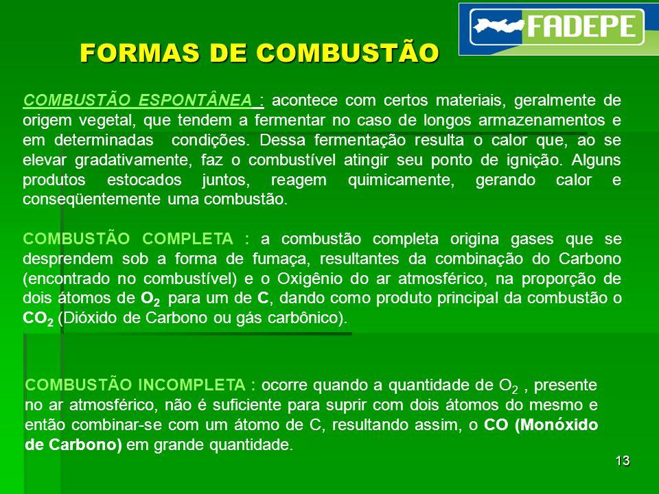 13 FORMAS DE COMBUSTÃO COMBUSTÃO ESPONTÂNEA : acontece com certos materiais, geralmente de origem vegetal, que tendem a fermentar no caso de longos ar