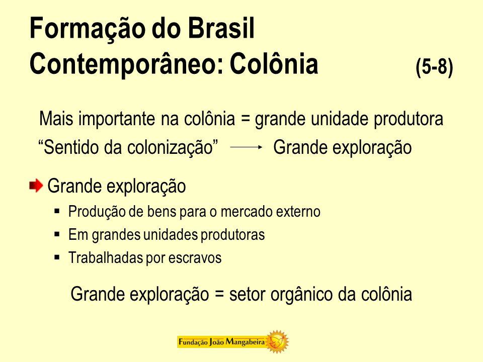 Formação do Brasil Contemporâneo: Colônia (5-8) Mais importante na colônia = grande unidade produtora Sentido da colonização Grande exploração Grande