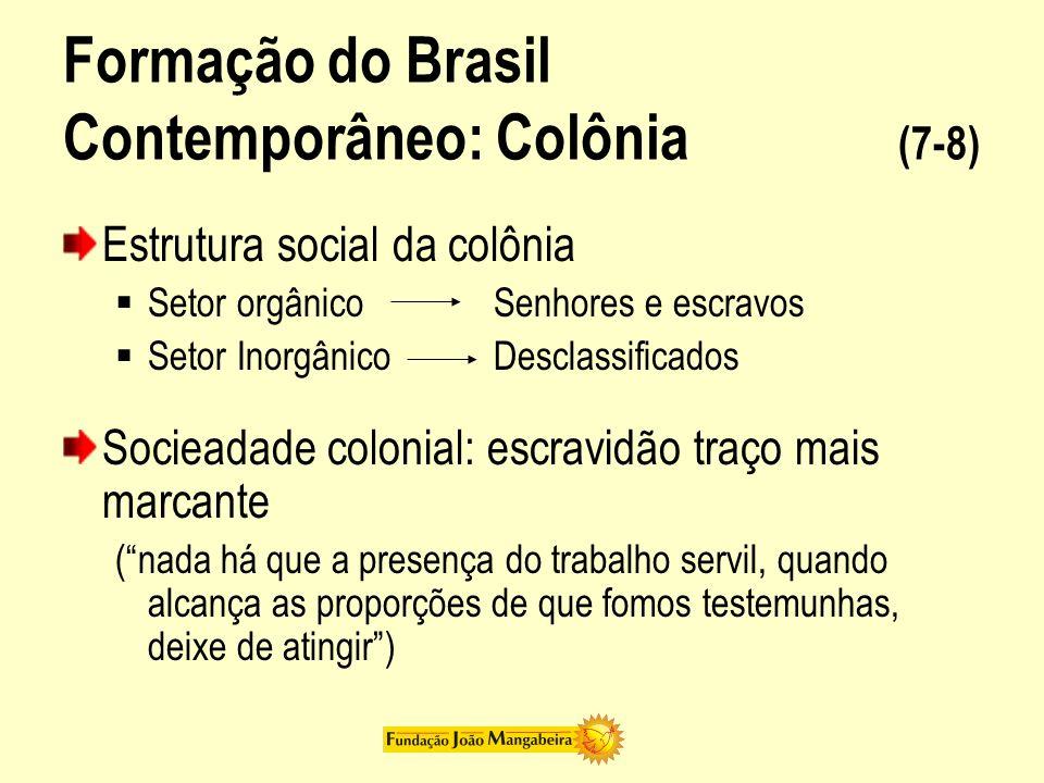 Formação do Brasil Contemporâneo: Colônia (7-8) Estrutura social da colônia Setor orgânico Senhores e escravos Setor Inorgânico Desclassificados Socie
