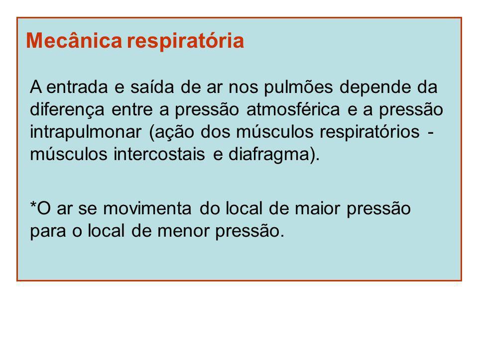 Mecânica respiratória A entrada e saída de ar nos pulmões depende da diferença entre a pressão atmosférica e a pressão intrapulmonar (ação dos músculo