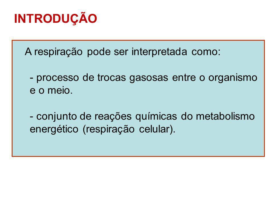 INTRODUÇÃO A respiração pode ser interpretada como: - processo de trocas gasosas entre o organismo e o meio. - conjunto de reações químicas do metabol