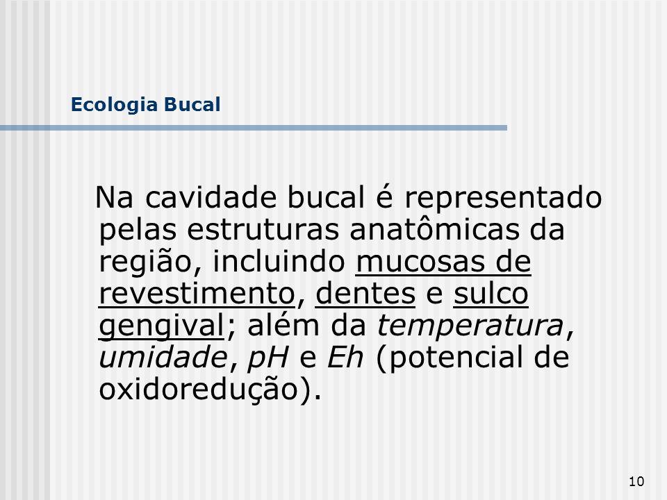 10 Ecologia Bucal Na cavidade bucal é representado pelas estruturas anatômicas da região, incluindo mucosas de revestimento, dentes e sulco gengival;