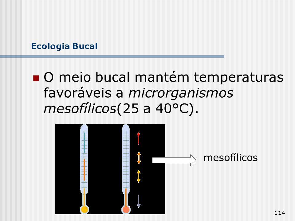 114 Ecologia Bucal O meio bucal mantém temperaturas favoráveis a microrganismos mesofílicos(25 a 40°C). mesofílicos