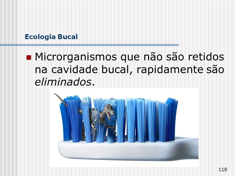 118 Ecologia Bucal Microrganismos que não são retidos na cavidade bucal, rapidamente são eliminados.