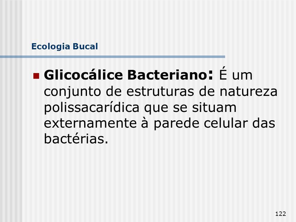 122 Ecologia Bucal Glicocálice Bacteriano : É um conjunto de estruturas de natureza polissacarídica que se situam externamente à parede celular das ba