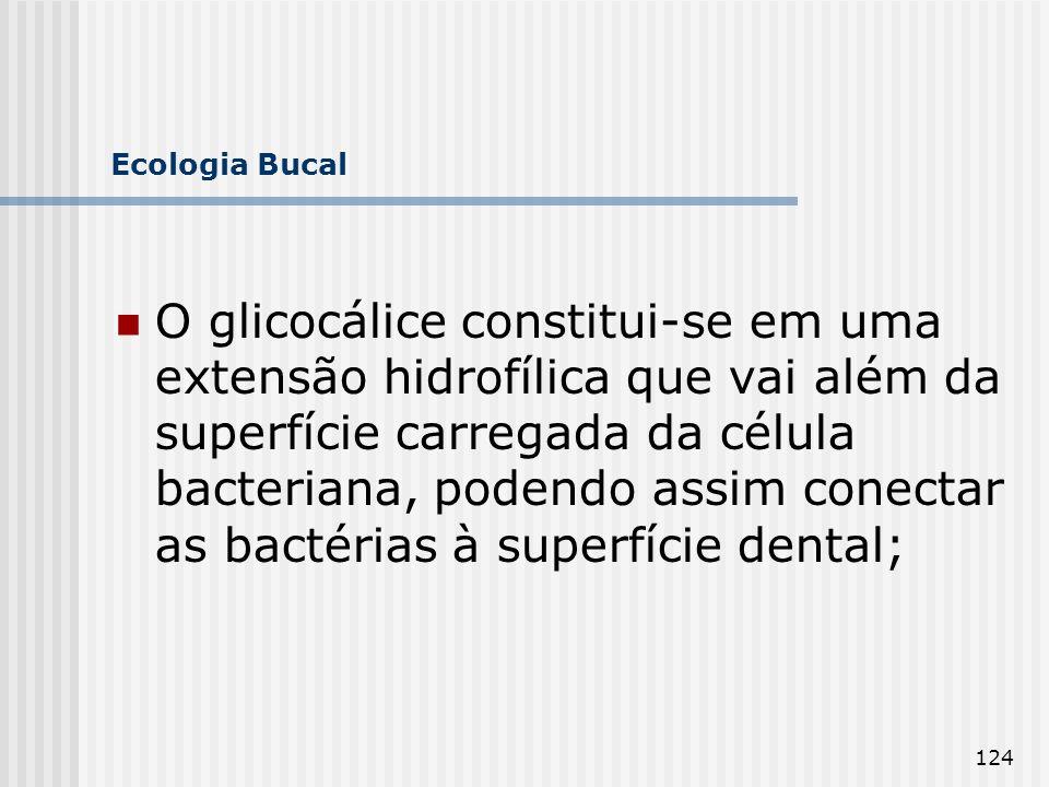 124 Ecologia Bucal O glicocálice constitui-se em uma extensão hidrofílica que vai além da superfície carregada da célula bacteriana, podendo assim con