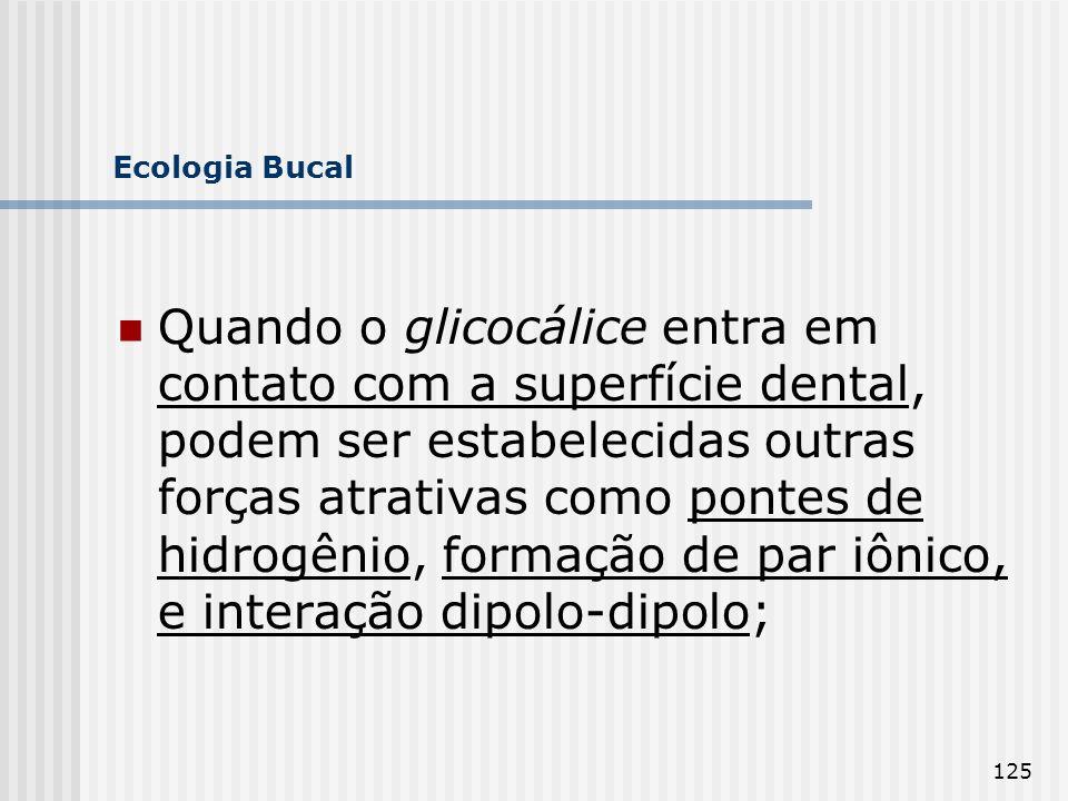 125 Ecologia Bucal Quando o glicocálice entra em contato com a superfície dental, podem ser estabelecidas outras forças atrativas como pontes de hidro