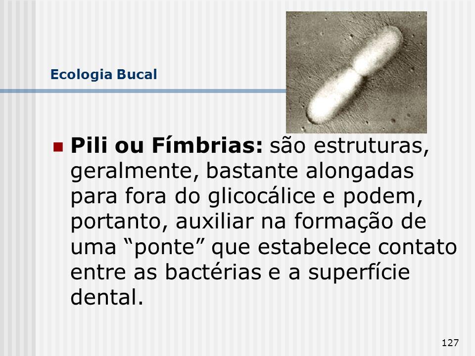 127 Ecologia Bucal Pili ou Fímbrias: são estruturas, geralmente, bastante alongadas para fora do glicocálice e podem, portanto, auxiliar na formação d