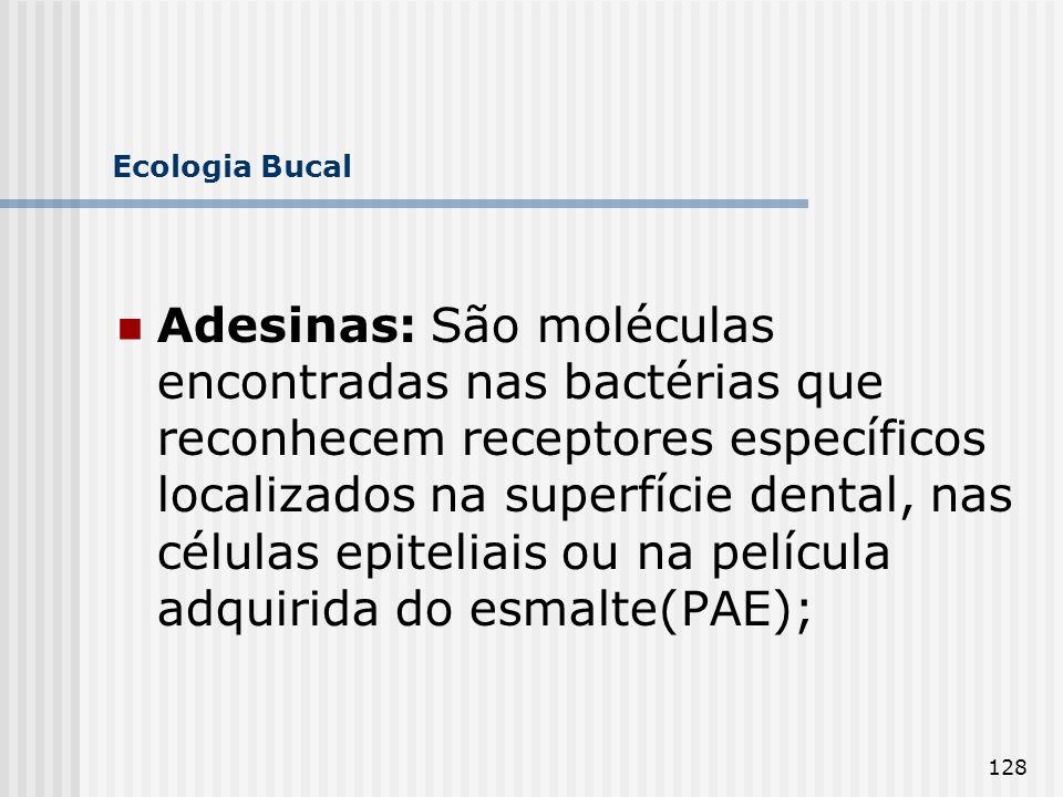 128 Ecologia Bucal Adesinas: São moléculas encontradas nas bactérias que reconhecem receptores específicos localizados na superfície dental, nas célul