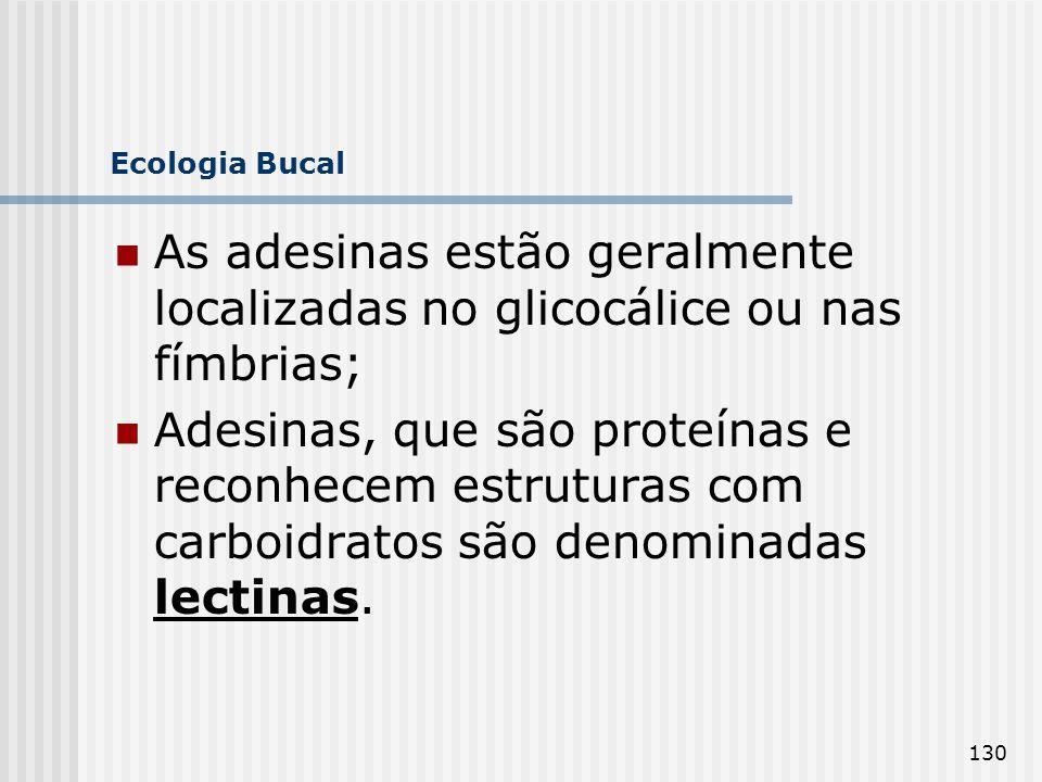130 Ecologia Bucal As adesinas estão geralmente localizadas no glicocálice ou nas fímbrias; Adesinas, que são proteínas e reconhecem estruturas com ca