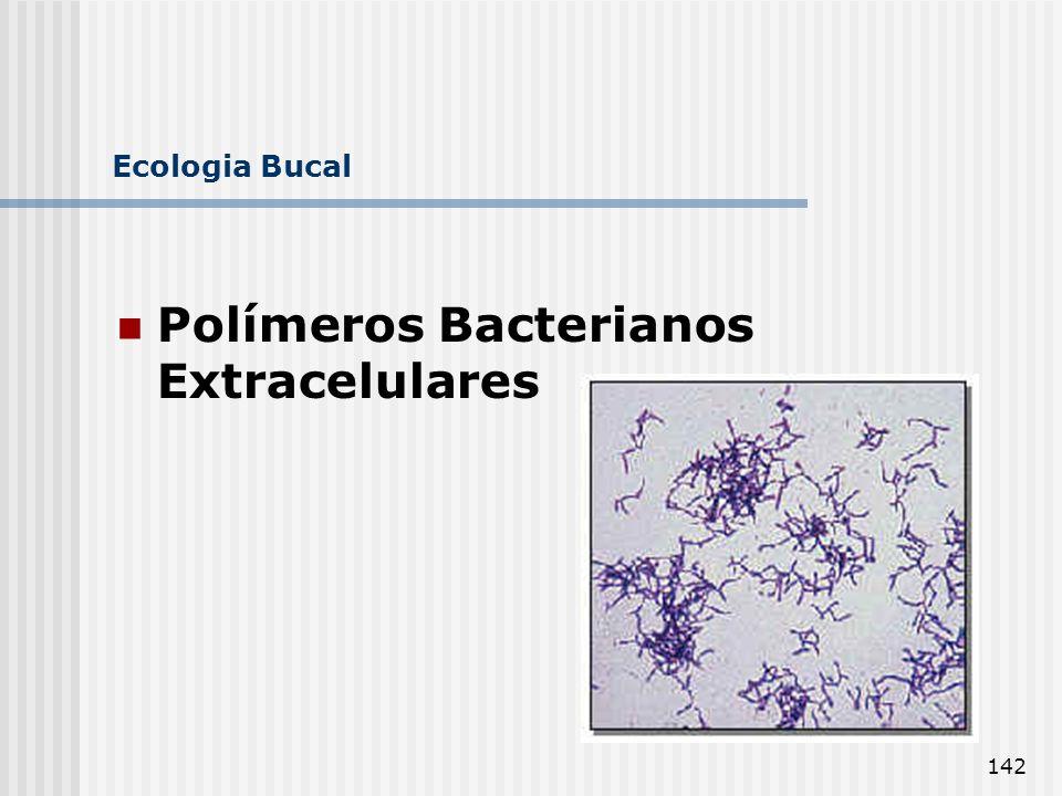 142 Ecologia Bucal Polímeros Bacterianos Extracelulares