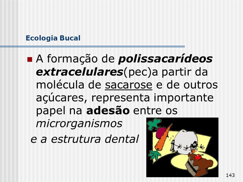 143 Ecologia Bucal A formação de polissacarídeos extracelulares(pec)a partir da molécula de sacarose e de outros açúcares, representa importante papel